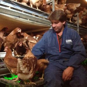 Von glücklichen Hühnern: Unsere Eier